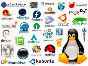 linux s